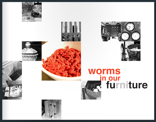 Worms in our Furniture Book cover